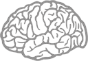 banner3-brain.png
